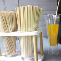 Wheat Drinking Straw: an alternative to plastic straw
